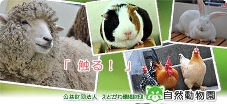 自然動物公園