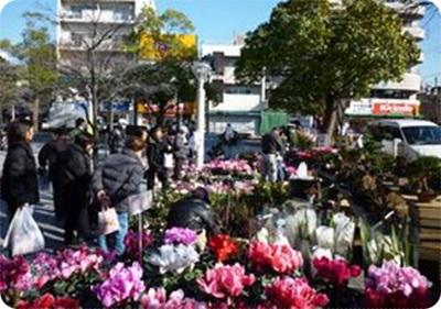 正月用 花の展示即売会